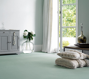 View the Carpets available from Brocksons Home